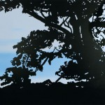Tree 2008 170 x 120 cm, acryl op doek